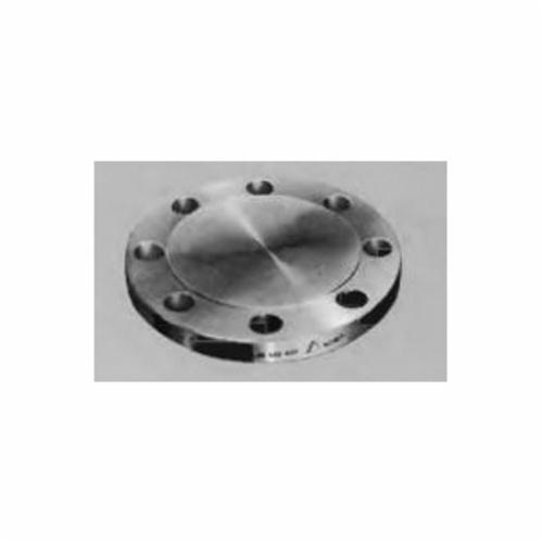 Merit Brass A635BL-96 Raised Face Blind Flange, 6 in, Forged 316/316L Stainless Steel, 150 lb, Import - SS Blind Flanges